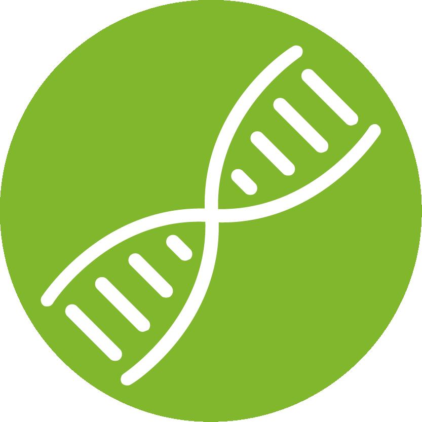 biologia-molecular